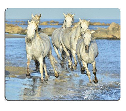 Luxlady Gaming Mousepad ID: 40354843 Witte paarden van Camargue lopen door water Frankrijk