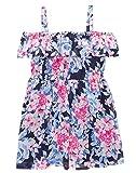 Gymboree Baby Girls Cold Shoulder Floral Print Dress, Periwinkle Roses, 4T