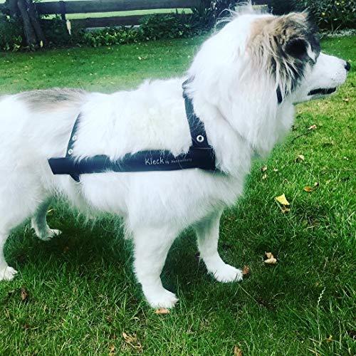 Kleck Leckschutz die Kragen/Krausen/Biss - Schutz Alternative für Hunde (M 32cm bis 39cm)