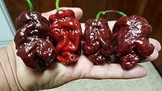 bbg7 pepper