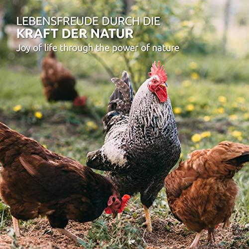 AniForte Wurm-Formel 50 g- Naturprodukt für Hühner, Gänse und Grossvögel - 5