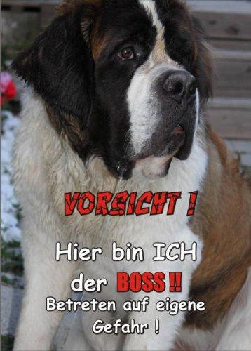 INDIGOS UG - Türschild FunSchild - SE311 DIN A4 ACHTUNG Hund BERNHARDIN?ER - für Käfig, Zwinger, Haustier, Tür, Tier, Aquarium - aus hochwertigem Alu-Dibond beschriftet sehr stabil