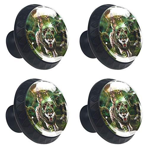 Perillas redondas para aparador de bestia (4 piezas) - Colorido decorativo floral cajón manija decoración del hogar Hardware Pull Pomos