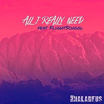 All I Really Need (feat. Flightschool)