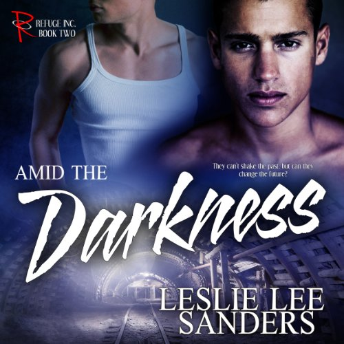 Amid the Darkness audiobook cover art
