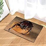 SLN Escarabajo Negro. Tamaño De La Estera: 40X60 Cm. Accesorios De Casa. Impresión 3D HD. Además De Terciopelo, Antideslizante. Alfombra.