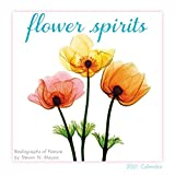 2021 Flower Spirits  Radiographs of Nature by Steven N. Meyers Mini Calendar