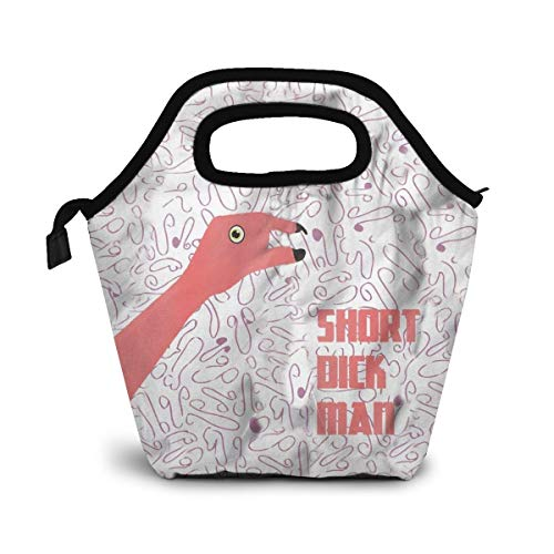 Flamingo Spoof Joke Gift Lunch Bag Cooler Bag Women Tote Bag Insulated Lunch Box Thermal Lunch Bags for Women/Picnic/Boating/Beach/Fishing/Work