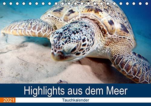 Highlights aus dem Meer - Tauchkalender (Tischkalender 2021 DIN A5 quer)