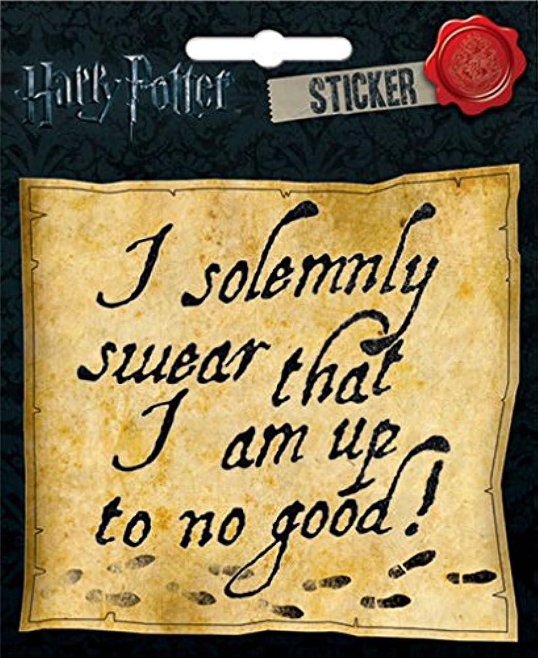 Ata-Boy Harry Potter I Solemnly Swear 4