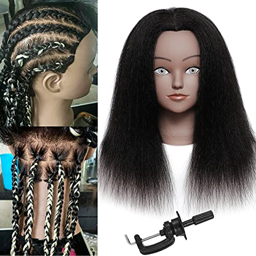 Mannequin Head with Human Hair Mannequin Head 14 inch 100% Real Hair Training Head Doll Head for Hairdresser Practice Styling Cosmetology Mannequin Head Hair with Free Clamp Stand (14 inch, D-D)