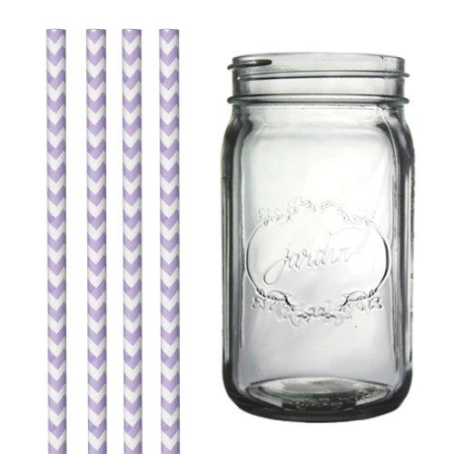 Dress My Cupcake DMC34960 Clear Vintage Jardin Mason Jar with Lilac Lavender Chevron Straws, 32-Ounce