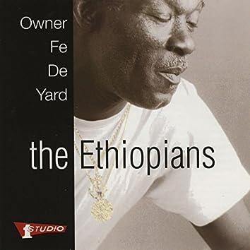 Owner Fe De Yard