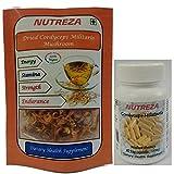 Cordyceps Militaris is a medicinal Mushroom. Cordyceps Militaris is a medicinal Mushroom. Helps in Increase Stamina, Energy, Health, Nutrition, Immunity