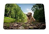 22cmx18cm マウスパッド (犬ウェット湖川木草岩泥) パターンカスタムの マウスパッド