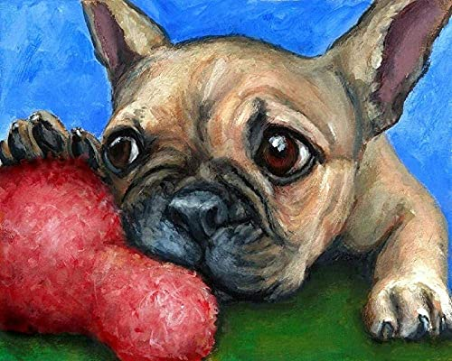 RUYUYM DIY 5D Diamond Painting Kits for Adults and Kids Cute French Bulldog Square Diamond Crystal Rhinestone Embroidery Cross Stitch Arts Craft Home Wall Decoration 11.8 15.7inch