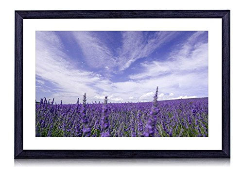 Fuzzy clouds over the lavender field - Flower - #46196 - Art Print Black Wood Framed Wall Art Picture (20x14 inches Framed)