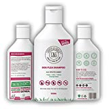 Best Dog Shampoos - Flea Shampoo For Dogs 500ml - Sensitive Itchy Review