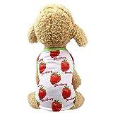 SUNMIAOMIAO Ropa para perrosFruta Verano Ropa para Perros Ropa para Perros Vestido para Perros Pareja Mascotas Faldas para Perros Ropa para Mascotas Perros Perrito Ropa para Gatos, Fresa 2, M