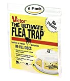 5. Victor 11 M231 Ultimate Flea Trap, (6 Refills), Yellow