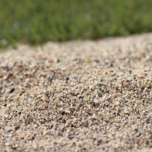 【芝生用 荒目砂 乾燥砂】木曽川流域産 洗い砂 (0-2mm) 200kg (20kg×10袋)【放射線量報告書付き】
