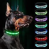 Light Up Dog Collars, RANTOJOY LED Dog Collar Rechargeable, Lighted Dog Collar Glow Safety Necklace Dog Collar Pet Flashing Collar Dog Cat Night Light Collar Adjustable Comfortable Soft Collar (Large)