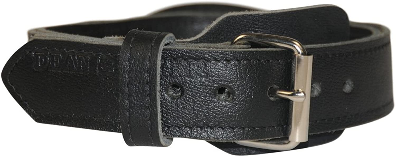 Dean and Tyler SIMPLICITY , Leather Dog Collar with Chrome Plated Steel Hardware  Black  Size 22Inch by 13 4Inch  Fits Neck 20Inch to 24Inch