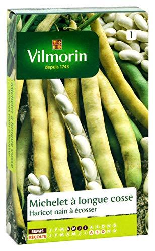Vilmorin 1161351 Pack de Graines Haricot Michelet à Longue Cosse