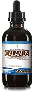 Calamus Tincture Alcohol-Free Liquid Extract, Organic Calamus (Acorus Calamus) Dried Root (4 FL OZ)