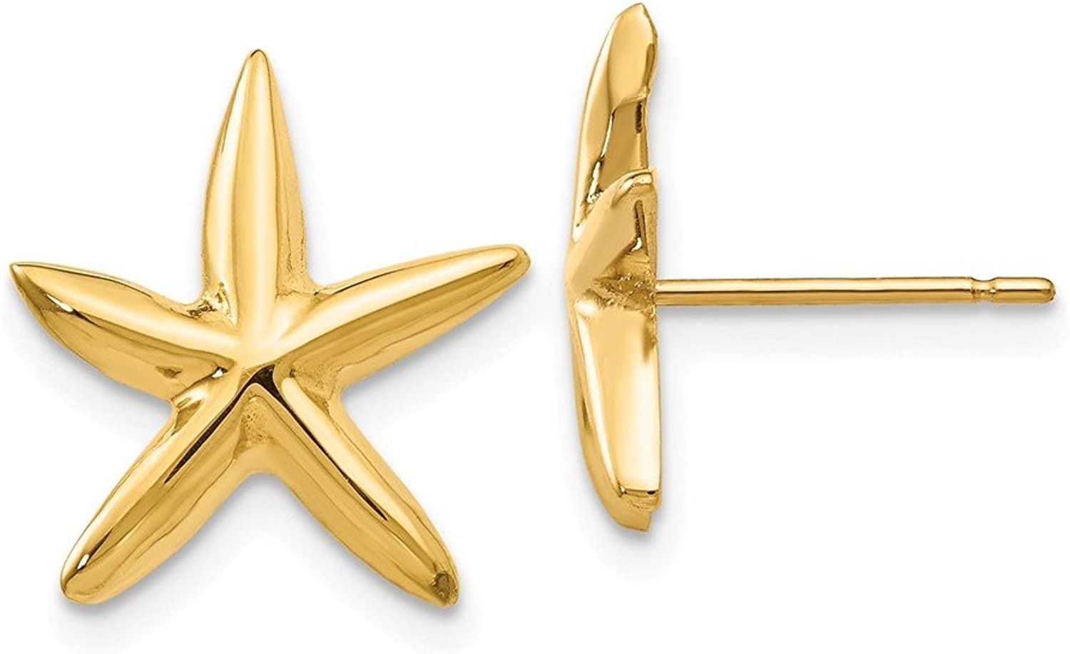 Beautiful Yellow gold 14K Yellowgold 14k Polished Starfish Post Earrings