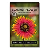 Sow Right Seeds - Blanket Flower Seeds to Plant - Full Instructions for Planting and Growing a Flower Garden; Non-GMO Heirloom Seeds; Wonderful Gardening Gift (1)