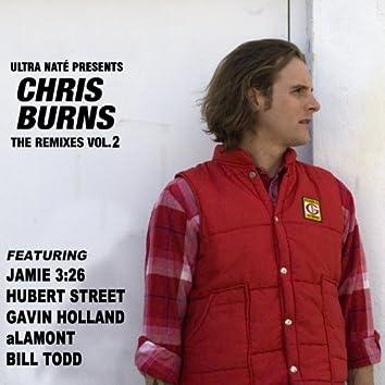Ultra Nate' Presents Chris Burns - The Remixes, Vol. 2
