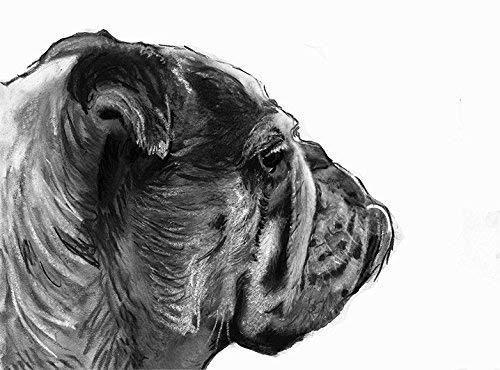 English Bulldog Drawing Wall Art Print, Dog Gift, English Bulldog Memorial, Black and White Drawing Decor, Hand Signed By Oscar Jetson Choice Of Sizes