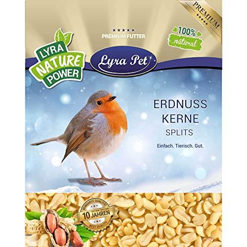 Lyra Pet® 25 kg Erdnusskerne Splits HK Afrika Haut Vogelfutter Körner Erdnussbruch Erdnüsse Wildvogelfutter Ganzjahresfutter