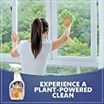 Earth Friendly Products ECOS Window Cleaner with Vinegar, 22-Ounce, Plant Powered Clean