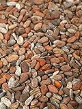 Geröstete Kakaobohnen aus Madagaskar