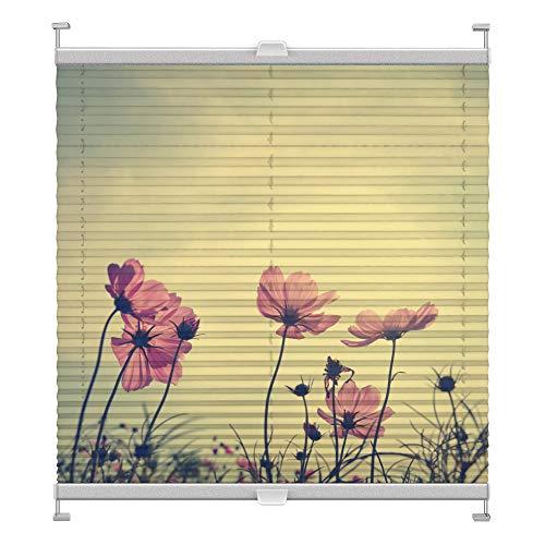 Plissee mit Motiv 6003 nach Maß Schrauben in Glasleisten Klemmen auf Fensterrahmen Digitaldruck Sichtschutz lichtdurchlässig fest verspanntes Jalousie Rollo Fenster innen Breite 75-99 Höhe 101-124 cm