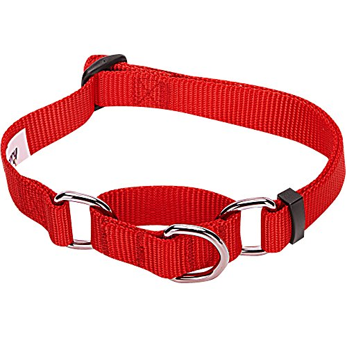 Blueberry Pet Essentials 19 Colors Safety Training Martingale Dog Collar, Rouge Red, Medium, Heavy Duty Nylon Adjustable Collars for Dogs
