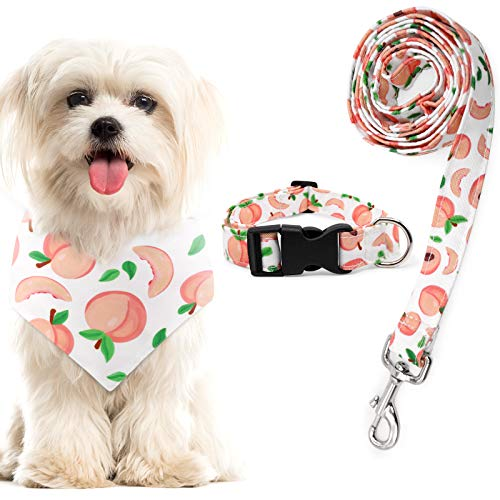 Peach Dog Bandana Collar and Leash Set Adjustable Collar for Daily Dogs Outdoor Walking Running Training Small Medium Pet Puppy Lovers Gifts Supplies Set of 3