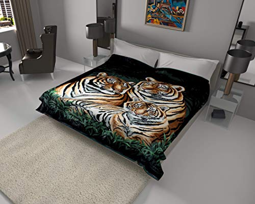 SOLARON Korean Super Thick Heavy Weight Mink Blanket (Queen, 3 Tigers Green)