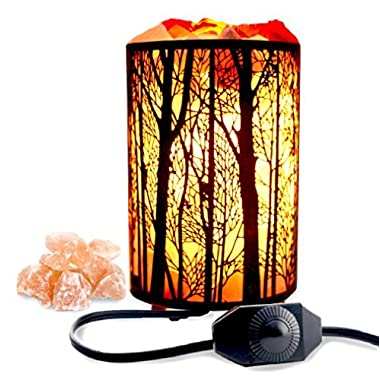 Natural Himalayan Salt Lamp,Air Purifying Pink Salt Rock Lamp Night Light in Forest Design Metal Basket with Dimmer Switch (4.1 x 6.5  4.4-5lbs),25Watt Bulbs & ETL Cord
