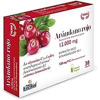 Arándano rojo extracto seco 240 mg (120 mg PAC) 30 cápsulas vegetales con Gayuba, D-manosa, vitamina C y cobre