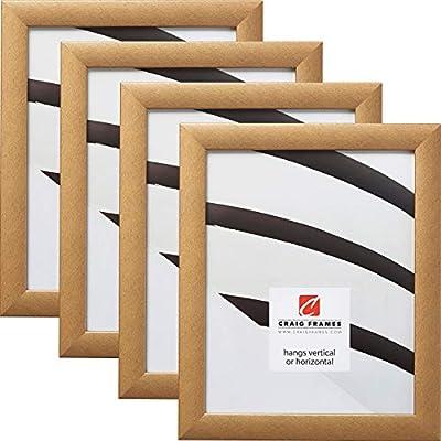 Craig Frames Contemporary Picture Frames, Set of 4