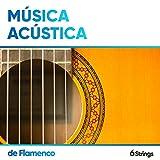 Música Acústica de Flamenco para Cenas Formales