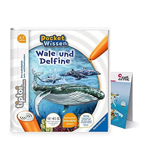 tiptoi Ravensburger Buch 4-7 Jahre | Pocket Wissen - Wale und Delfine + Kinder Weltkarten Poster | pocketwissen