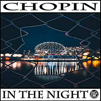 In the Night (Electronic Version)