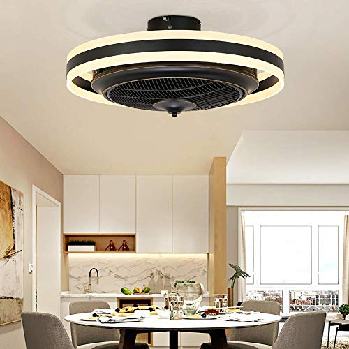 Ceiling Fans with Lights, 24 inch LED Ceiling Fan,...