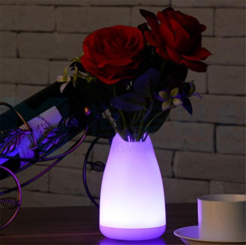 SUGER-LIGHT Vase Bureau Lampe Noël Lumière LED Fleur Pot Valentin Romantique Décoration Chambre Restaurant Table Décoration
