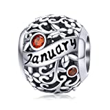 Birthstone Charms 925 Sterling Silver Bead Happy Birthday Charm January for Pandora Bracelet Necklace