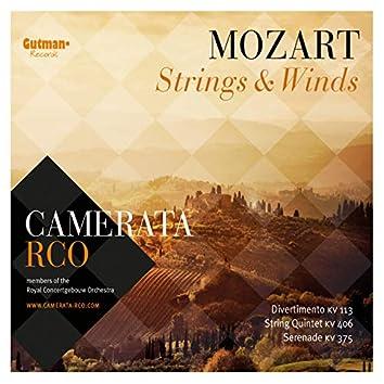 Mozart: Strings & Winds